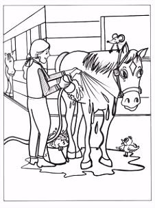 83 beste afbeeldingen van Kleurplaten in 2018 Drawings of horses