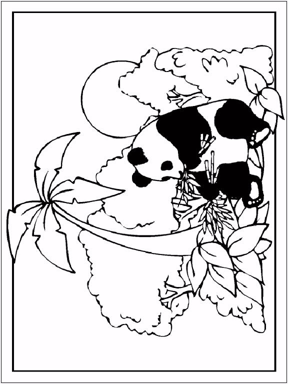 Kleurplaat Panda Kleurplaten