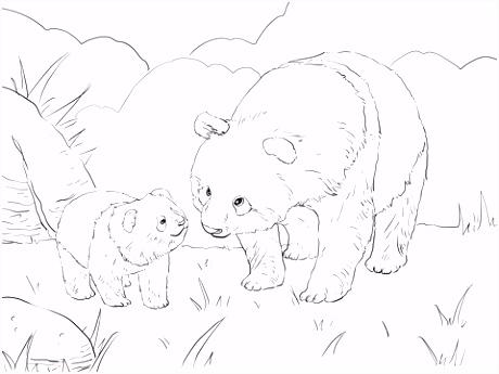 Moeder panda met schattige jong kleurplaat