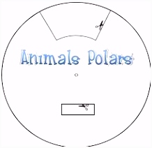 Pooldieren Wallpapers 142 Best ΖΩΑ ΣΤΟΥΣ ΠΟΛΟΥΣ Polar Animals Images On Pinterest In 2018 N3gg76tfa6 Bsac56jpah