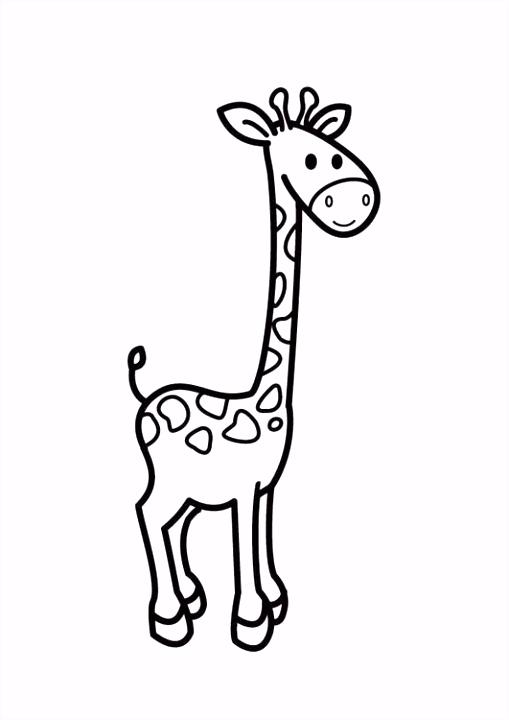Kleurplaat giraf Tekenen & kleuren