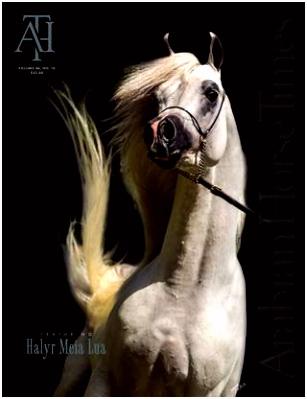 Vol46 No10 Arabian Horse Times by Arabian Horse Times issuu
