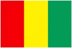 Vlaggen En Landen Kleuren Vlag Van Guinee E5va56nrr6 Murn2sudg2