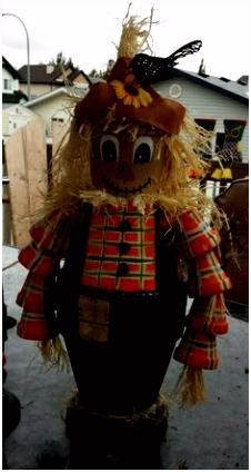 231 beste afbeeldingen van VOGELVERSCHRIKKERS Scarecrows