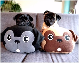 Na¯s Products Handmade pet beds and more door NaisProductsNL