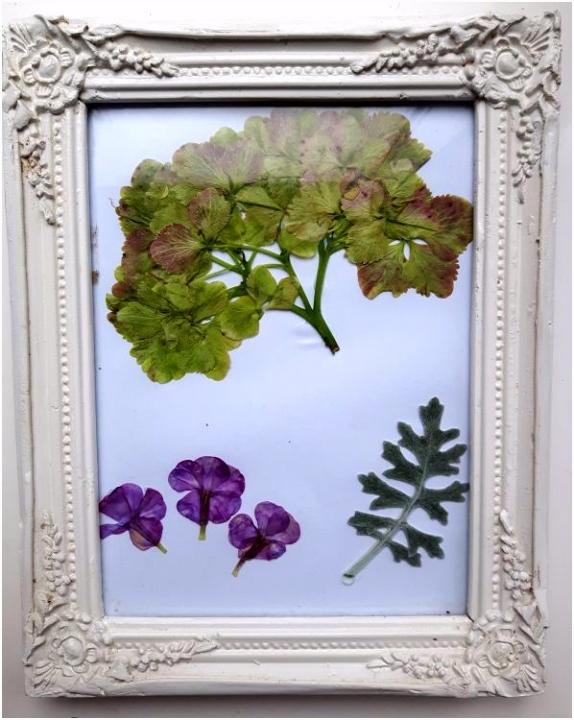 Bewaar de zomer met droogbloemen Elke dag nieuw