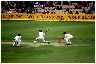 Nieuw Zeelands cricketelftal