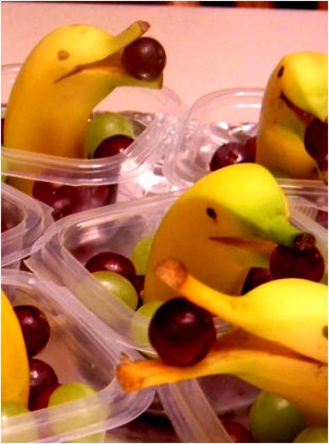 Leuke dolfijntraktatie van banaan