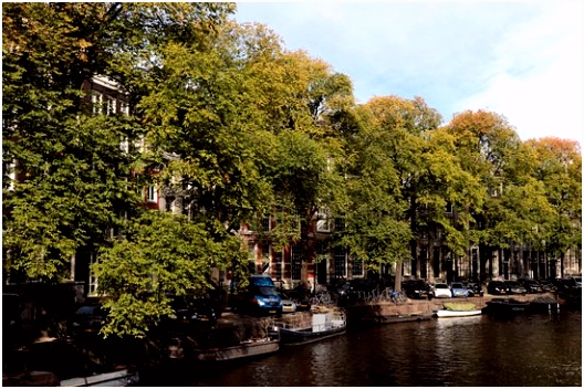 Herengracht in Amsterdam Picture of Herengracht Amsterdam