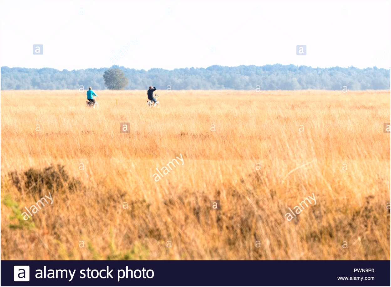 Nationaal Park Stock s & Nationaal Park Stock Alamy