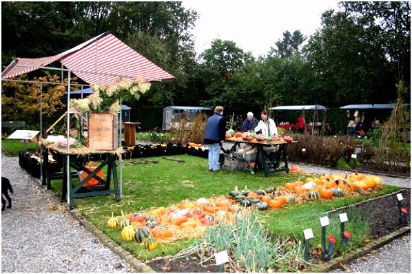 Oogstdag & Fruitshow bij botanische tuin De Kruidhof