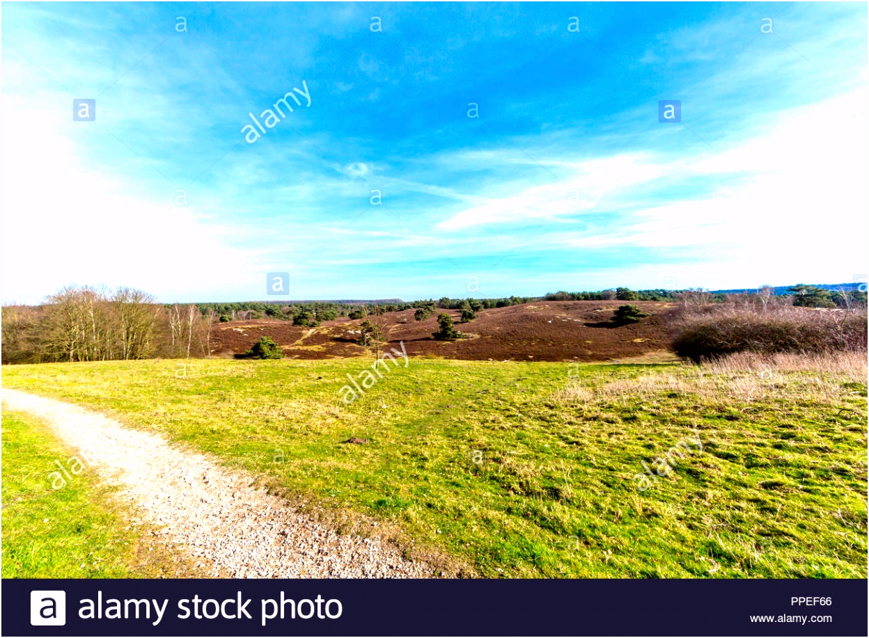 Amazing Contrast Stock s & Amazing Contrast Stock Alamy