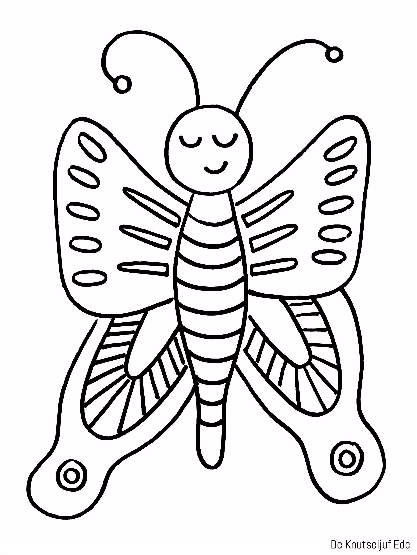 Van eitje tot vlinder kleurplaten