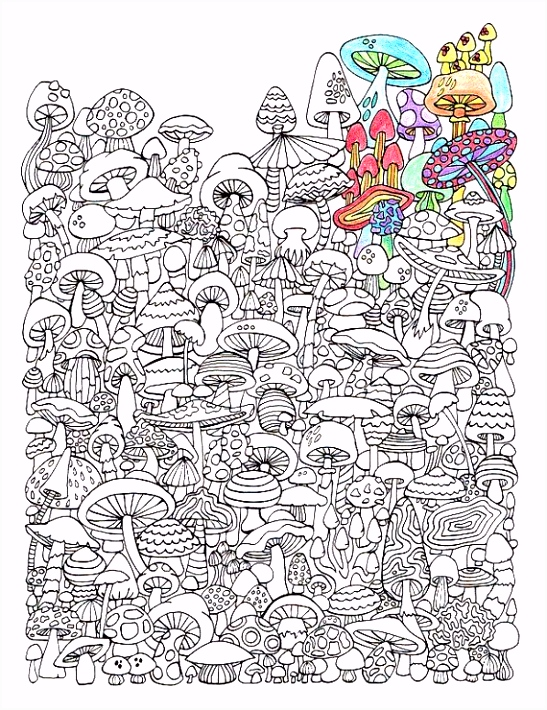 Adult Coloring Page Mushrooms Printable coloring page for adults