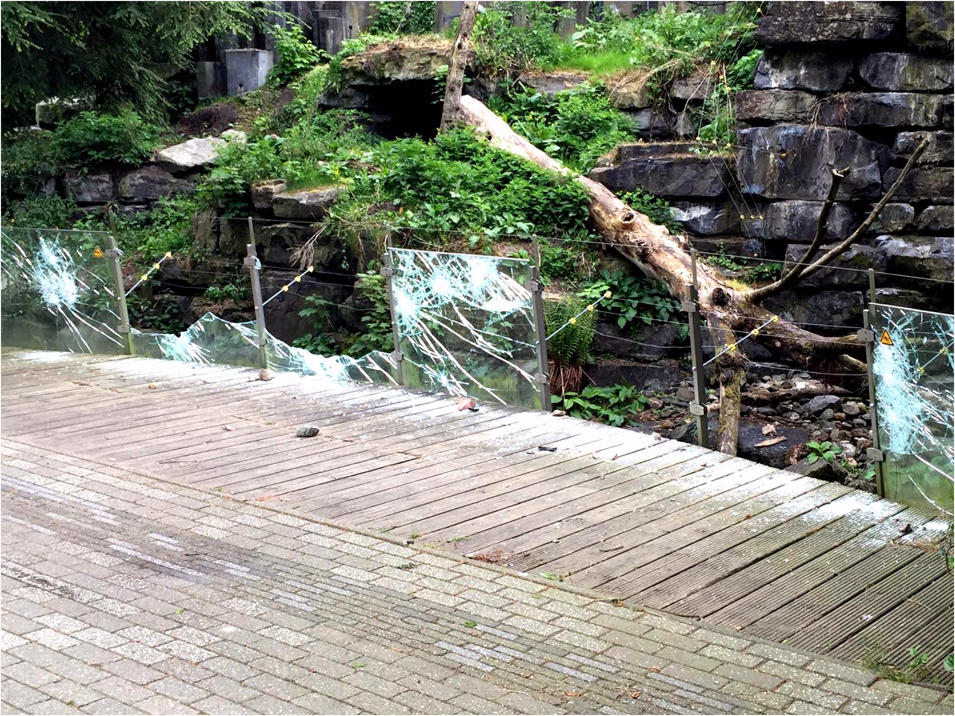 Vandalen richten ravage aan in het oude Dierenpark Emmen