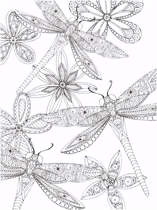 libelula dragonfly Zentangle Pinterest