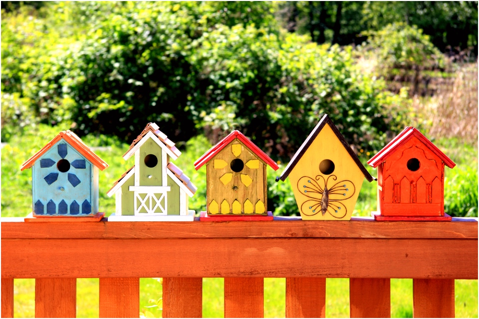 Dierenvriend Maak je eigen vogelhuisje Lees meer op onze blog