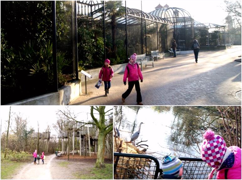 Visiter Amsterdam avec enfants tous les bons plans VOYAGE FAMILY