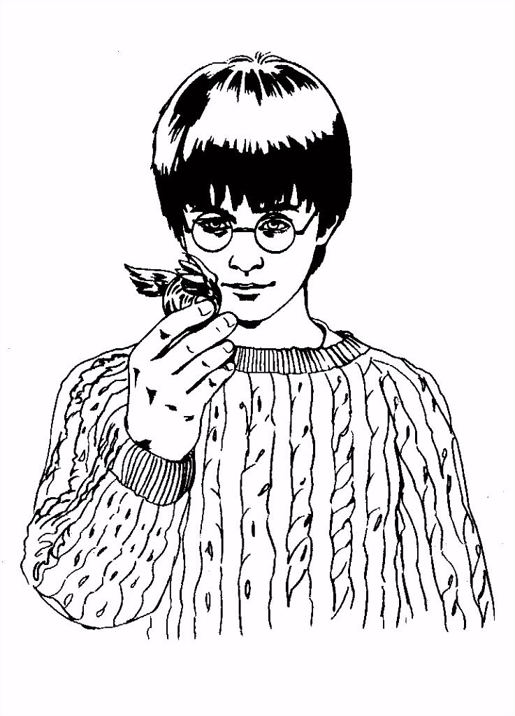 kleurplaat Harry Potter en de Steen der Wijzen Kids n Fun