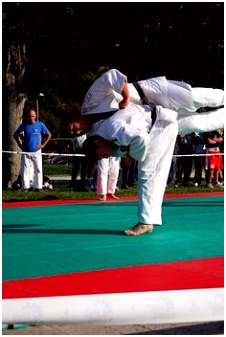 Kleurplaten Karate 1086 Best Judo Images On Pinterest In 2018 E9xq52gce7 astc6uwkvu