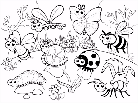 Detailed Coloring Page – Bugs in Our Garden