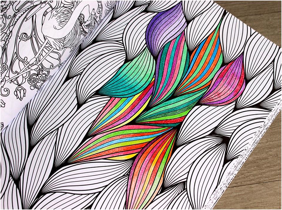 Volwassenen Kleuren Ook JE69 – Aboriginaltourismontario