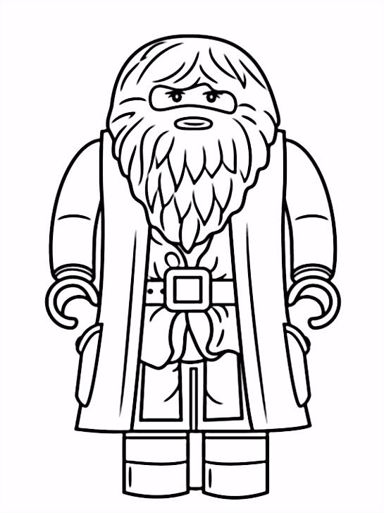Lego Harry Potter Coloring Pages 2 Celebrations Pinterest