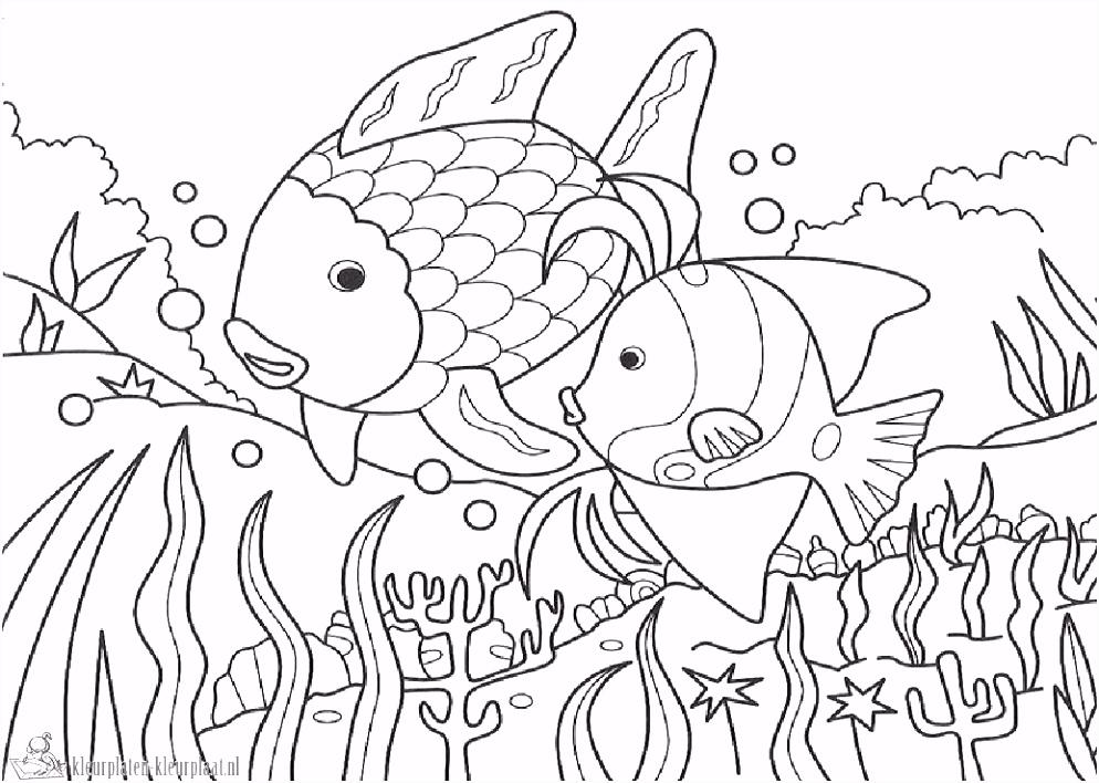 Kleurplaten mooiste vis van de zee