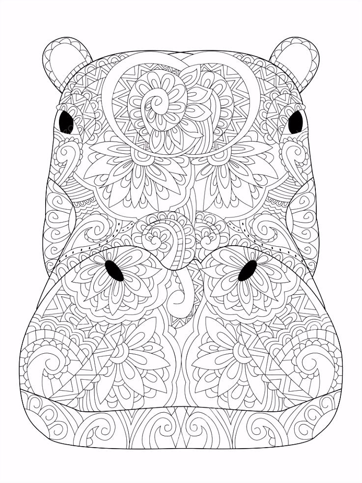 Kop nijlpaard vector kleurplaten voor volwassenen — Stockvector