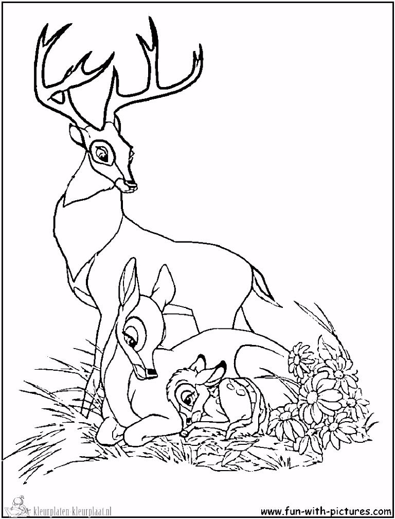 Dessins Gratuits  Colorier Coloriage Bambi  imprimer