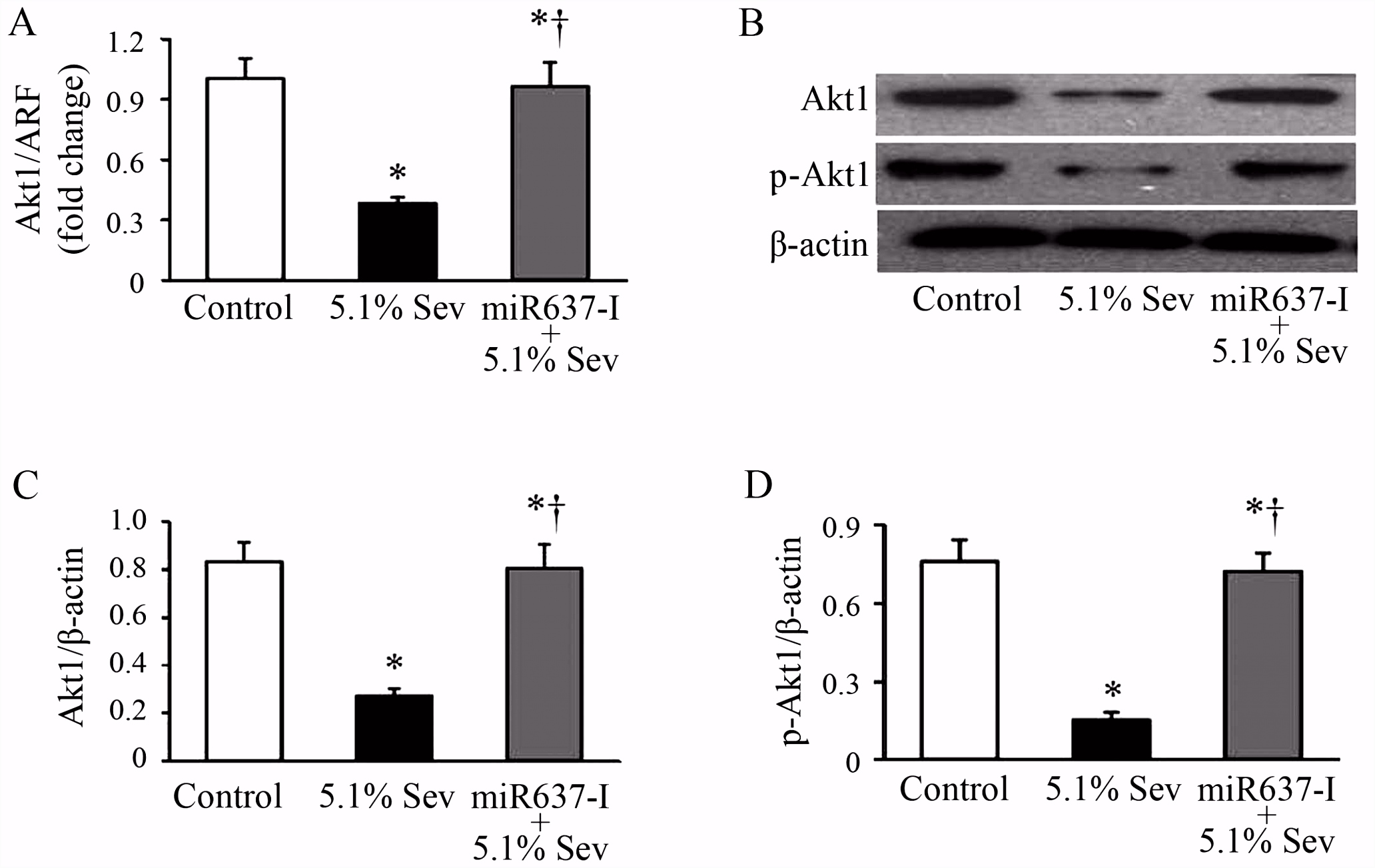 Sevoflurane inhibits the migration and invasion of glioma cells by