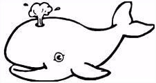 33 beste afbeeldingen van birtjes tekening voorbeelden Cartoons
