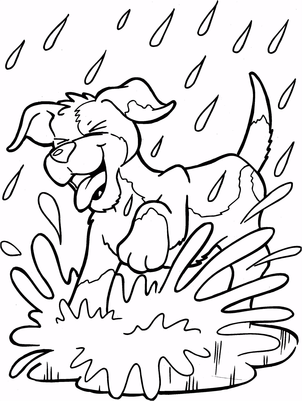 Honden kleurplaat Coloring Pinterest
