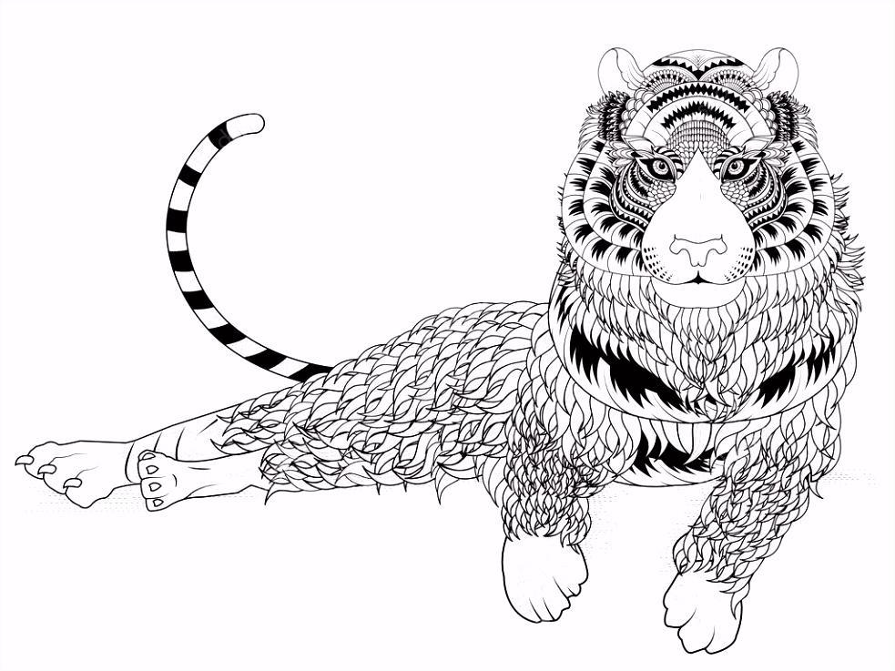 aantrekkelijke tijger kleurplaat — Stockvector © kchungtw