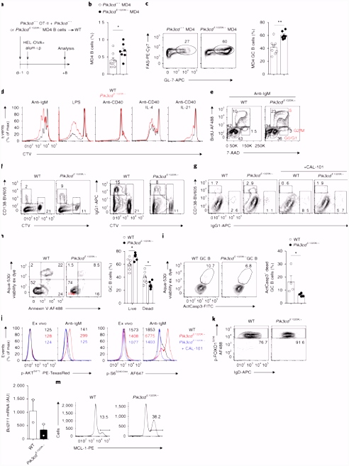 Hyperactivated PI3Kδ promotes self and mensal reactivity at the
