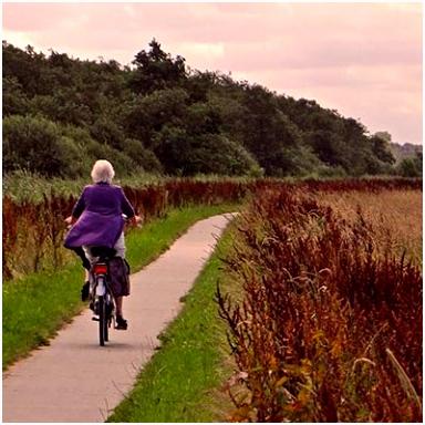 Natuurroutes It Fryske Gea