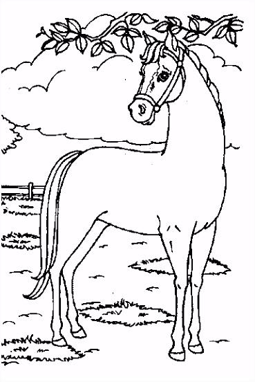 Kleurplaat Masker Paard ARCHIDEV