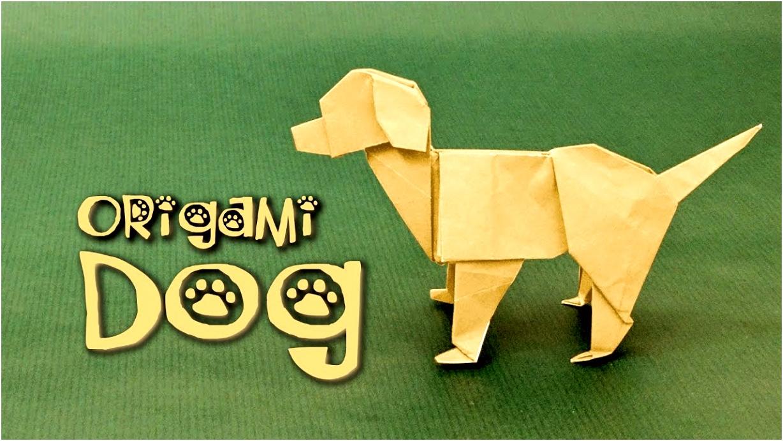 Origami Dog Tutorial Labrador Steven Casey