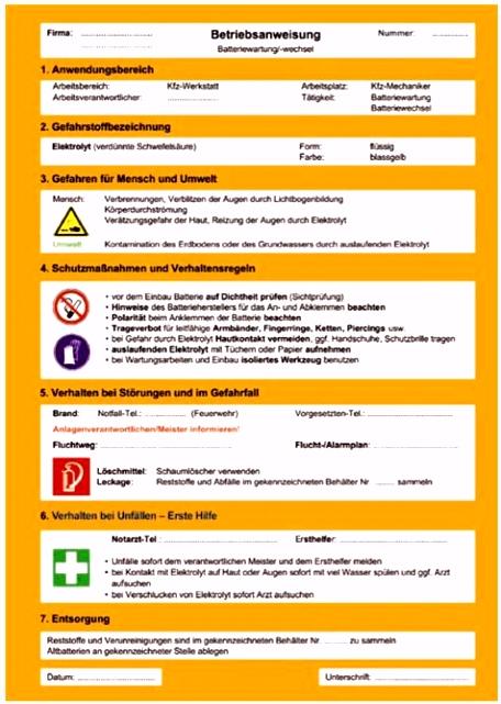 umwelt online Demo Archivdatei BGI 5017 DGUV Information 209