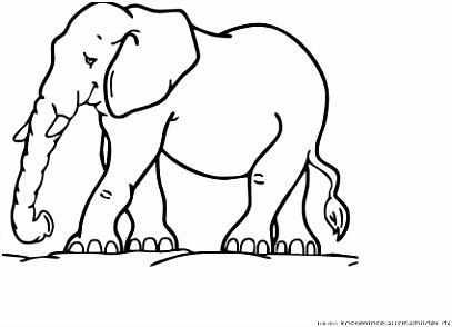 Elefant Basteln Vorlage elefant basteln aus sch nem tonkarton