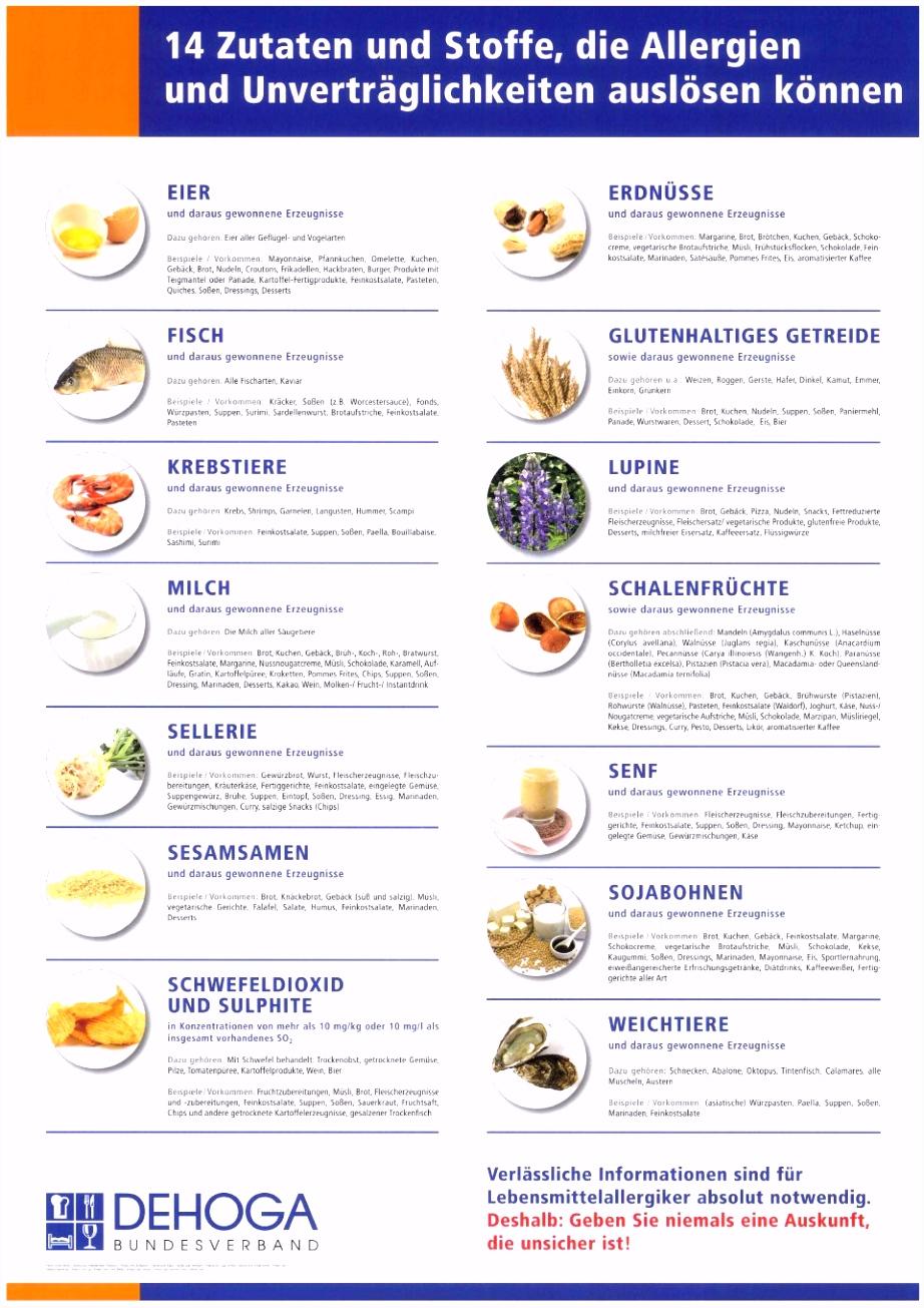 Neues Allergene Speisekarte Vorlage