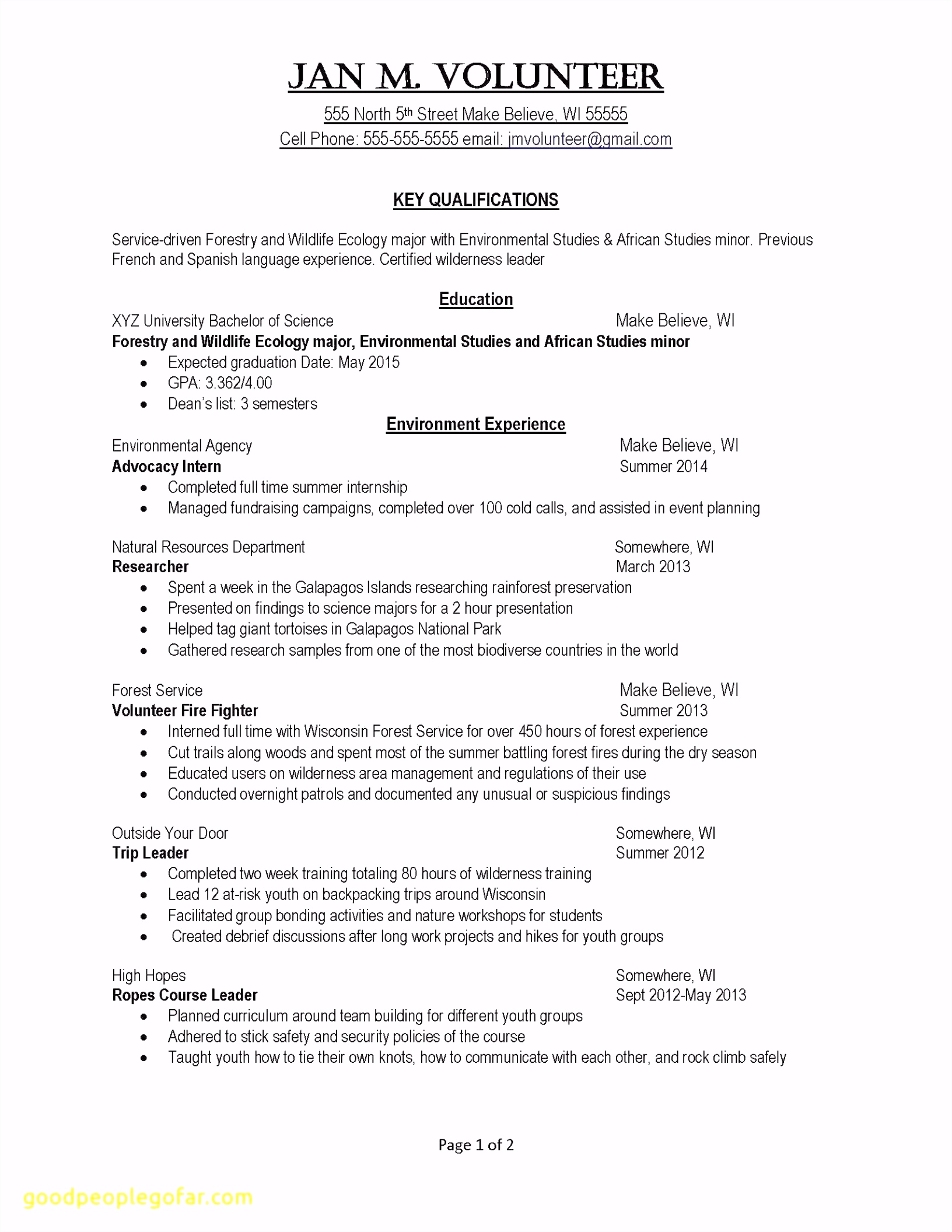 Creative Resume Templates Examples Free Creative Resume Template