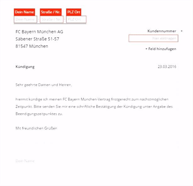 Kundigung Sportverein Vorlage ritmgfo
