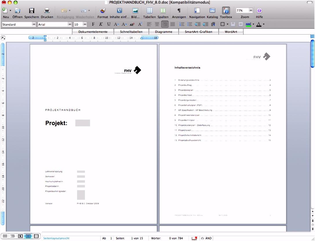 Projekthandbuch für Kleinprojekte