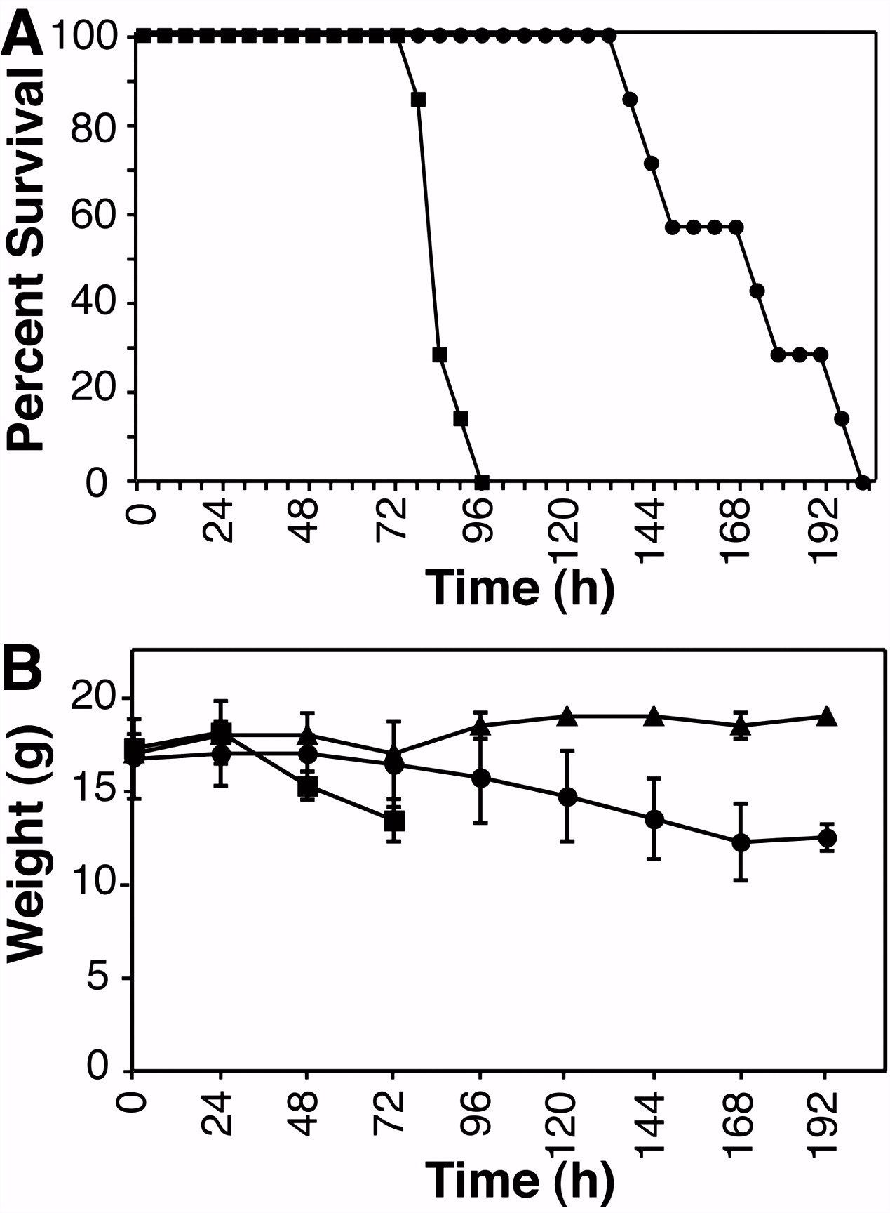 UL54 Null Pseudorabies Virus Is Attenuated in Mice but Productively