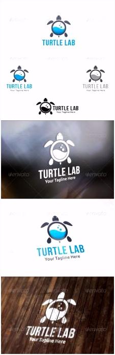 Die 44 besten Bilder von Turtle Logo Inspiration