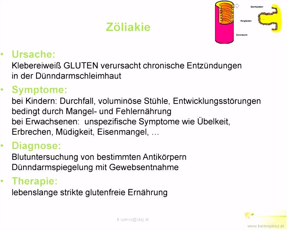 Allergenkennzeichnung Gastronomie Vorlage Gut Geschult Für