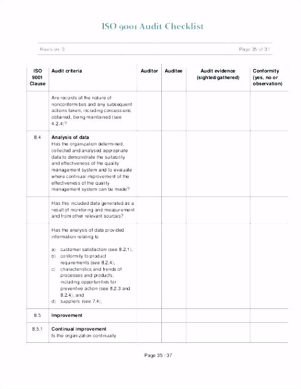 Audit Template Excel Business Process Audit Template Audit Checklist