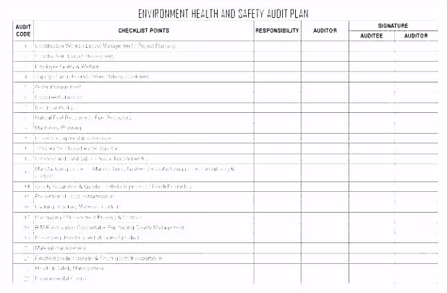 Internal Audit Business Plan Template Excel Basic Well Annual Sample