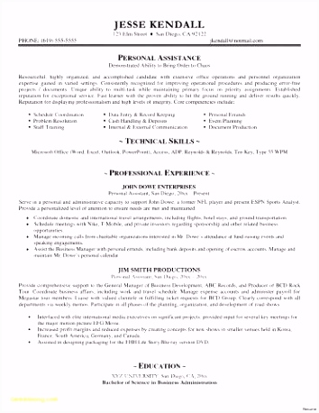 Executive Resume Template Word New Resume Samples Doc New Executive